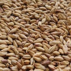 Słód Aroma 0,5kg Castlemalting