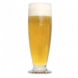 Summer Ale 12°BLG