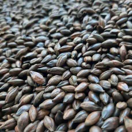 Słód Carafa typ II 0,5kg Weyermann