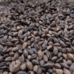 Black malt 0,5kg - Castlemalting