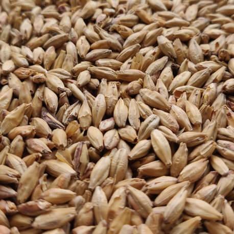 Słód Monachijski Ciemny 1kg Viking Malt