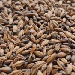 Słód Kawowy Ciemny 0,5kg Castlemalting