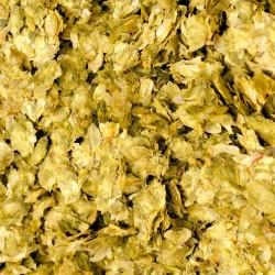 Old hop cones for Lambic 100g - whole cones
