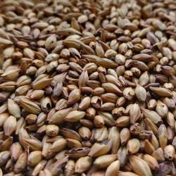 Słód Caramunich typ I 1kg Weyermann