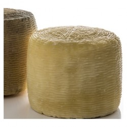 Stagionato Cheese Bacteria Culture